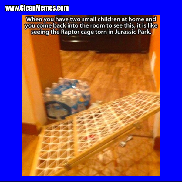 RaptorCage