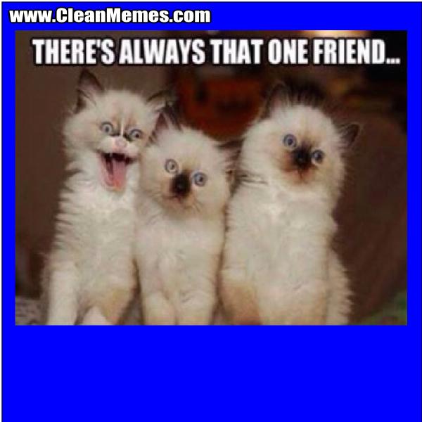 AlwaysThatOneFriend
