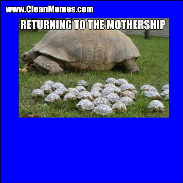 ReturningToTheMothership