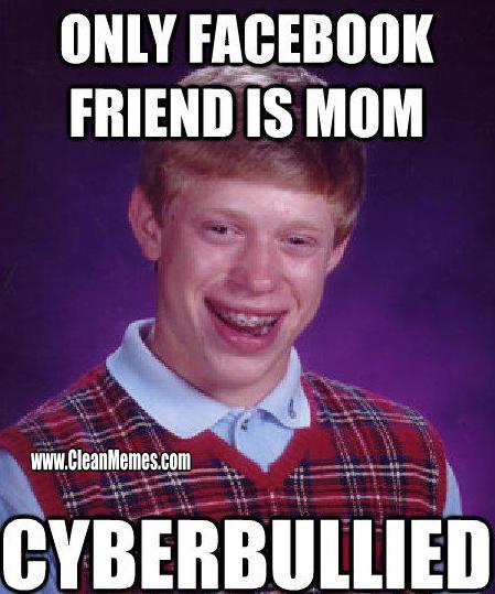 17Cyberbullied