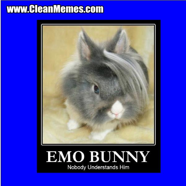 EmoBunny