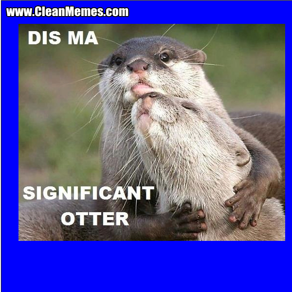SignificantOtter