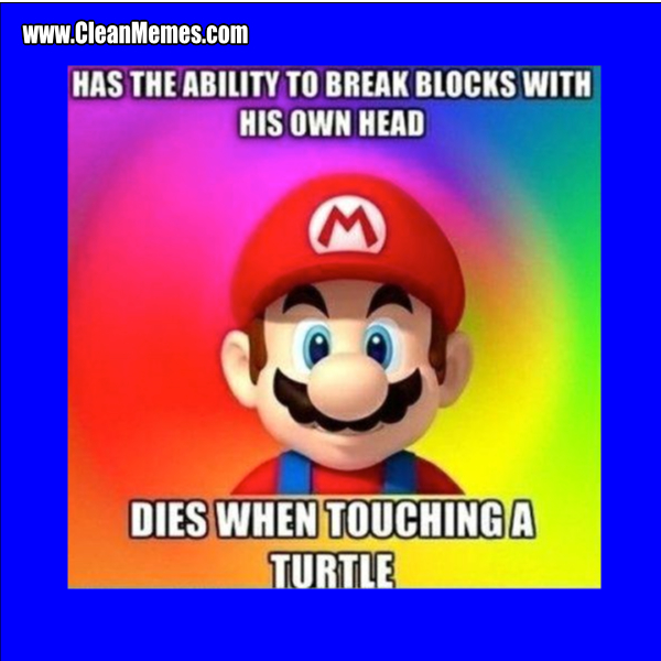 Touchingaturtle Author Cleanmemesposted