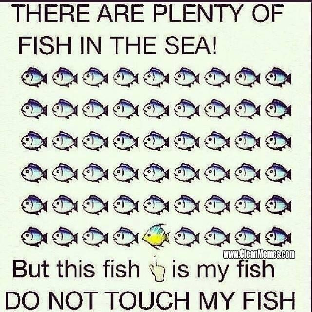 153MyFish