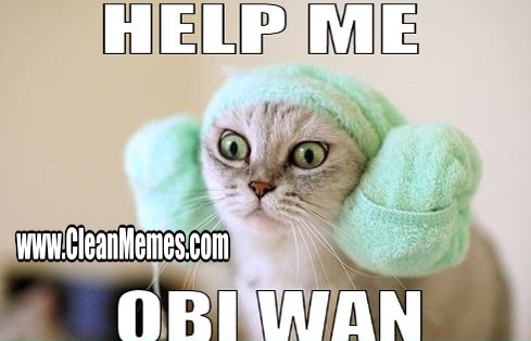 Funny Clean Memes 2015 : Crab memes clean memes