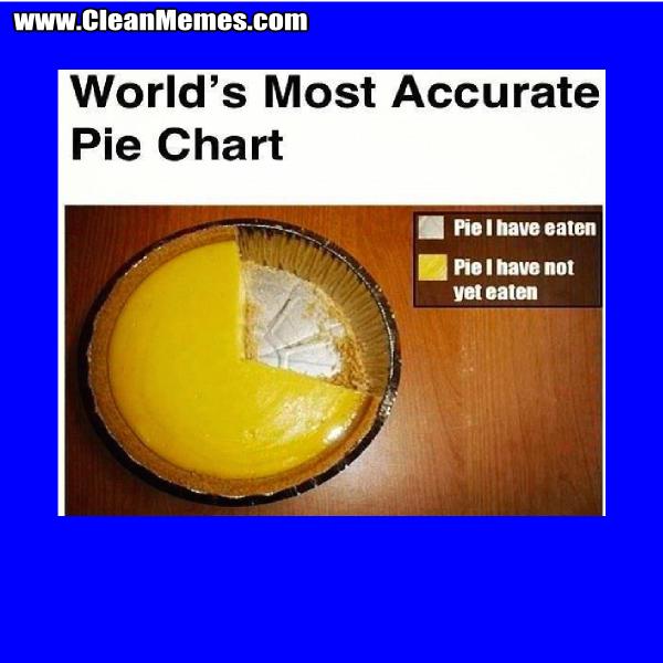 11AccuratePieChart