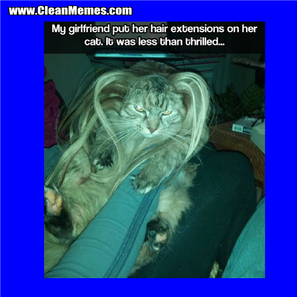 Hair Extensions Clean Memes