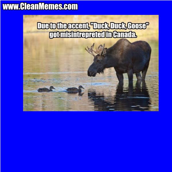 Duck Duck Goose Clean Memes