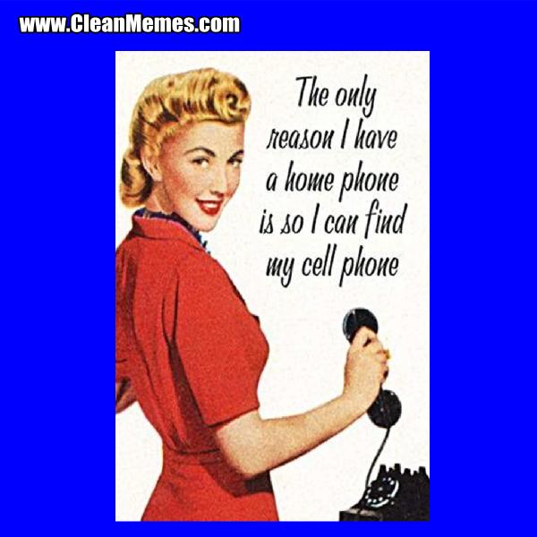 5HomePhone