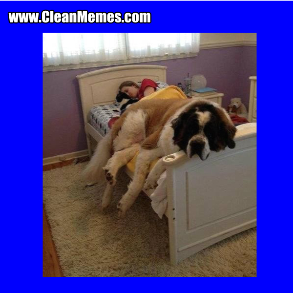 Clean Memes - Page 257 - The best and most clean memes online.
