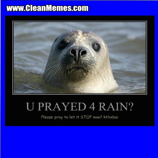 10stopnow clean memes page 130 clean memes