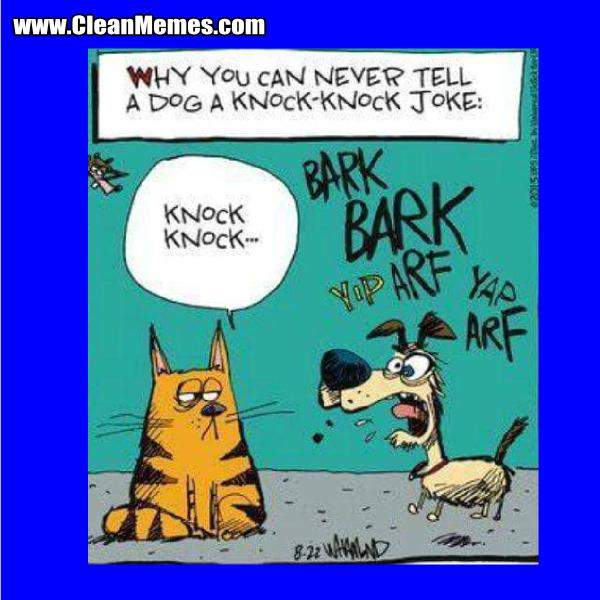 48KnockKnockJoke