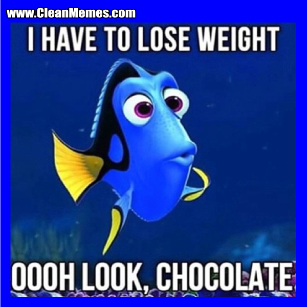Image result for lose weight memes