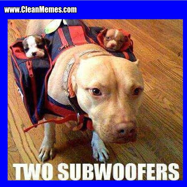 1TwoSubwoofers