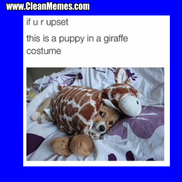 96PuppyInGiraffe