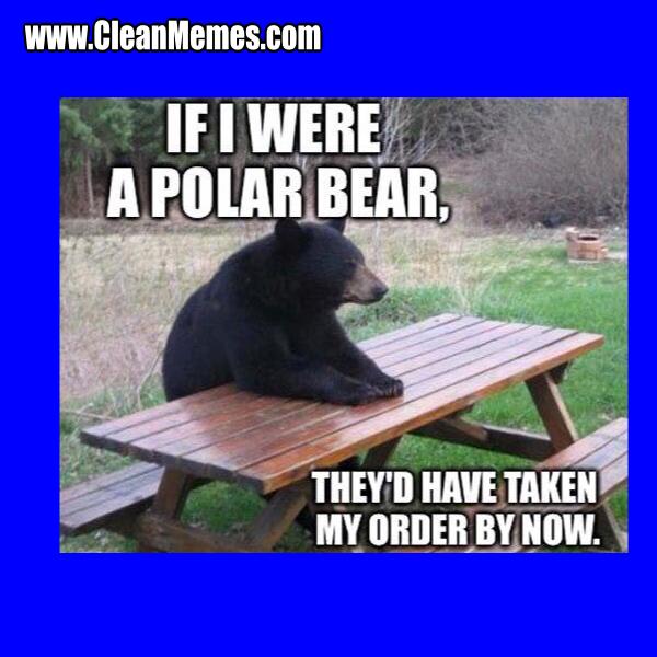 2PolarBear