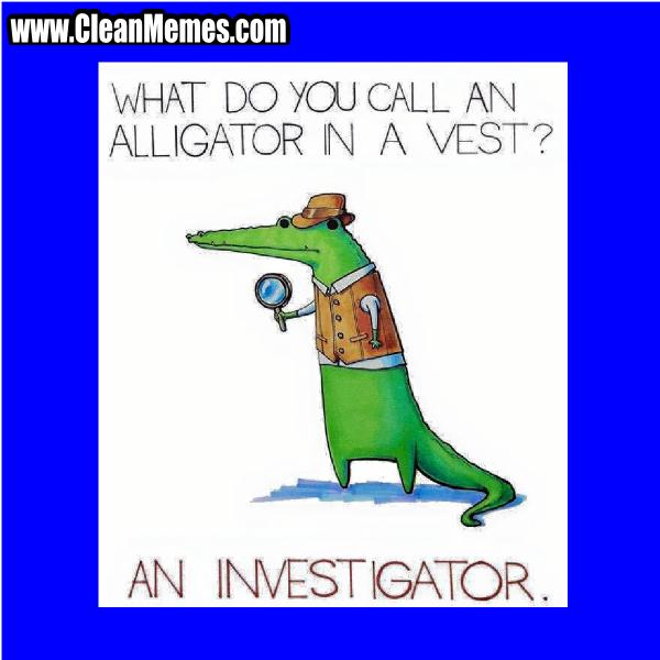 10Investigator