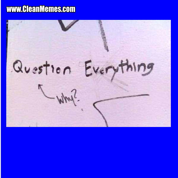 81QuestionEverything