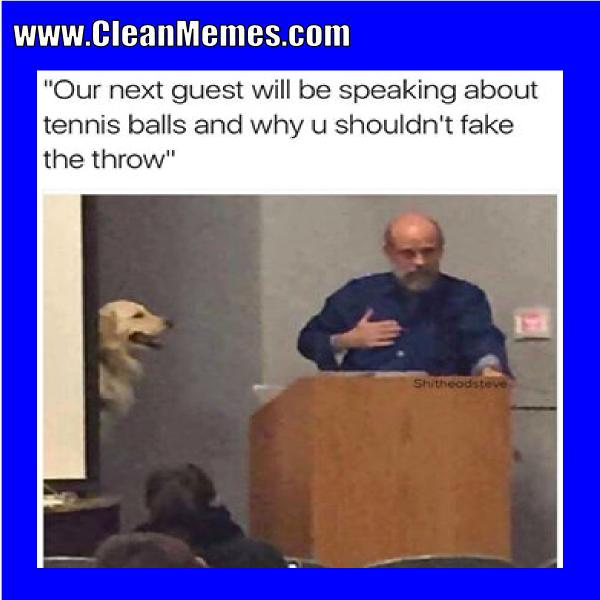 38tennisballs