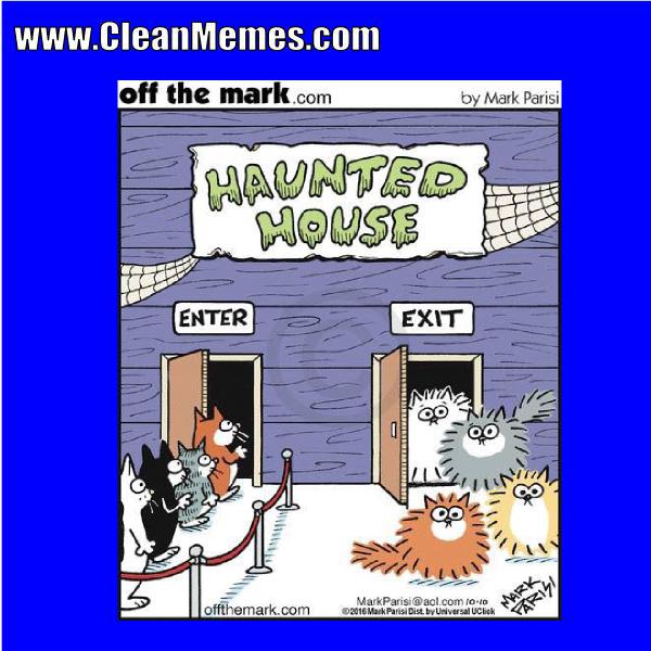 8hauntedhouse