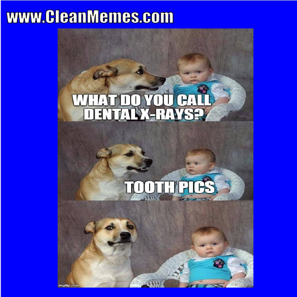 Funny clean dog memes - photo#39