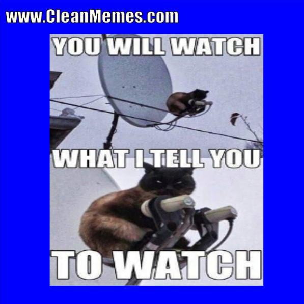 87willwatch