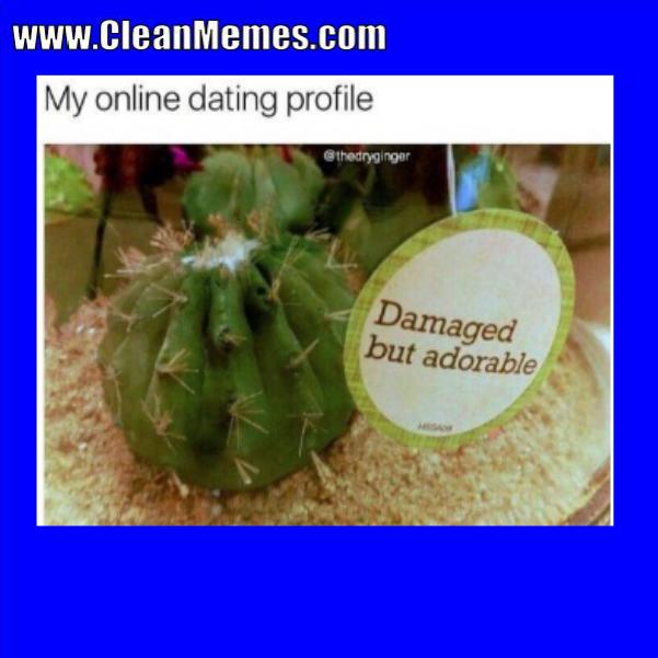 07Damaged