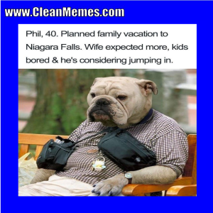 Funny clean dog memes - photo#43