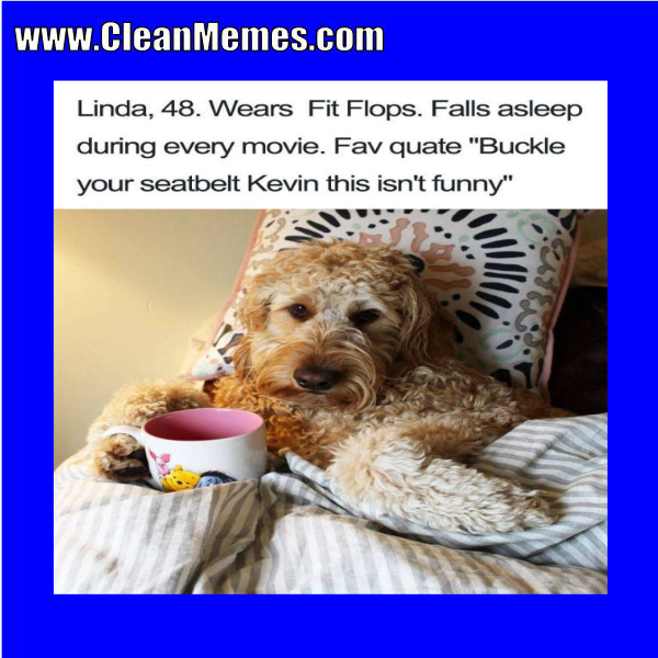 Funny clean dog memes - photo#42