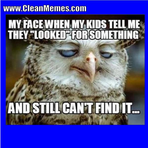clean memes