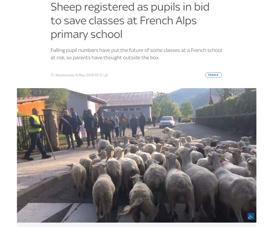 Sheep1.png